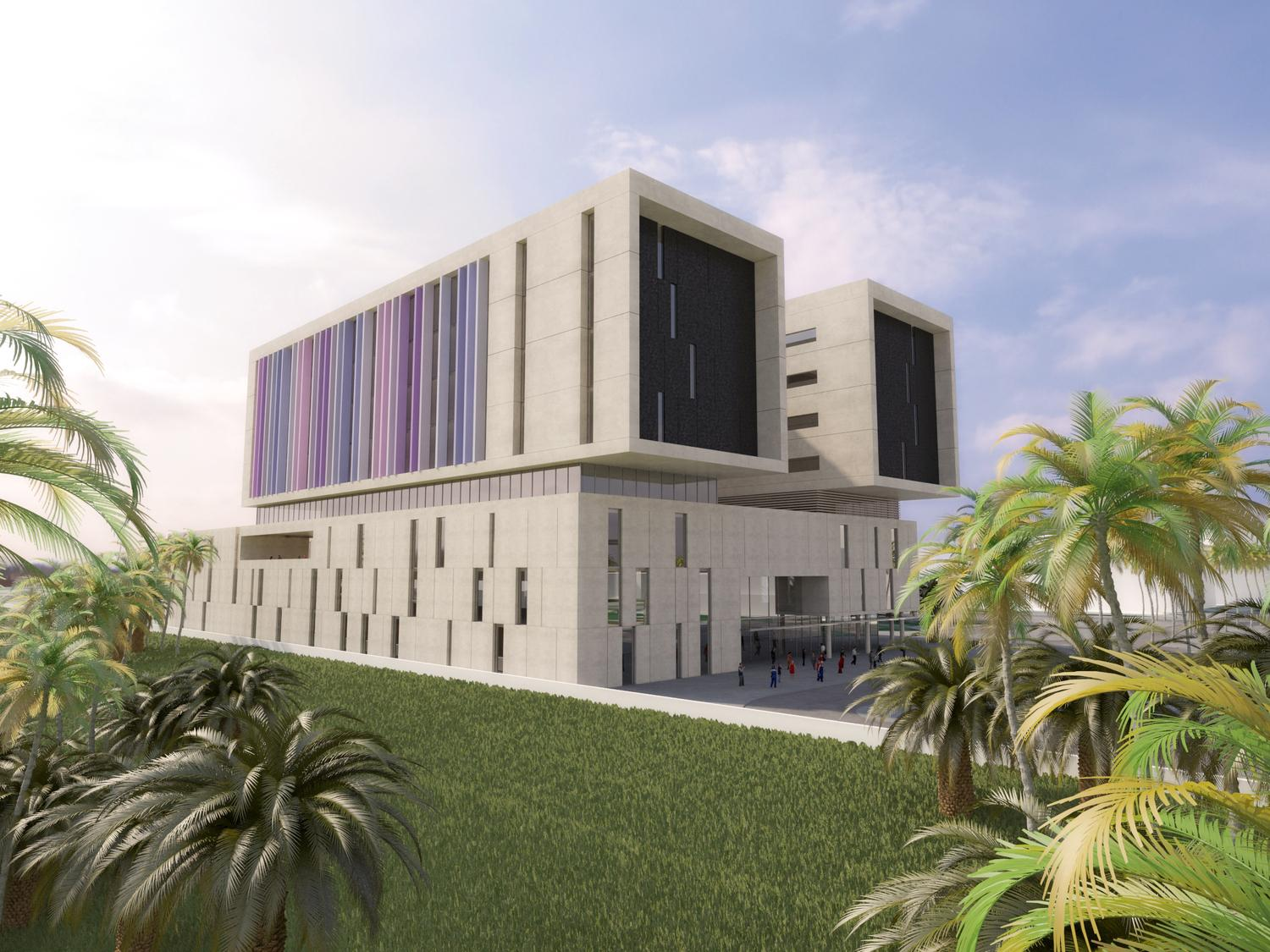 Egypt's PPP healthcare project